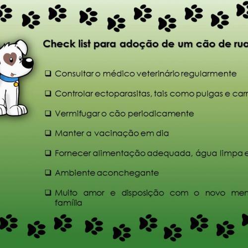 Check list de adoção